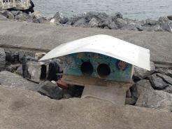 Une cabanes/coloc de chaton sur le bord de mer